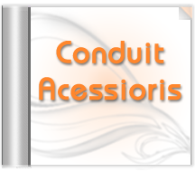Conduit Accessories